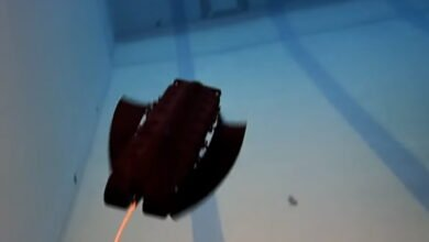 Photo of A Robot that Ice Skates AND Swims
